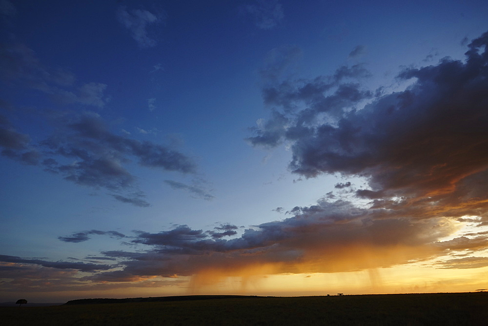 Rain and sunset on the Maasai Mara plains, Kenya, East Africa, Africa