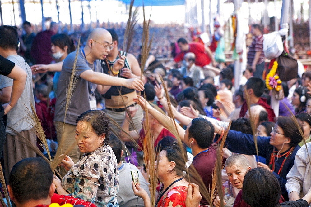 Tens of thousands of buddhist pilgrims from around the world traveled to bodhgaya, a town in northern india, to hear exiled tibetan spiritual leader hh dalai lama give the kalachakra-religious teachings. Pilgrims offer holy kusha grass (amrisso). Kalachakra initiation in bodhgaya, bihar, india