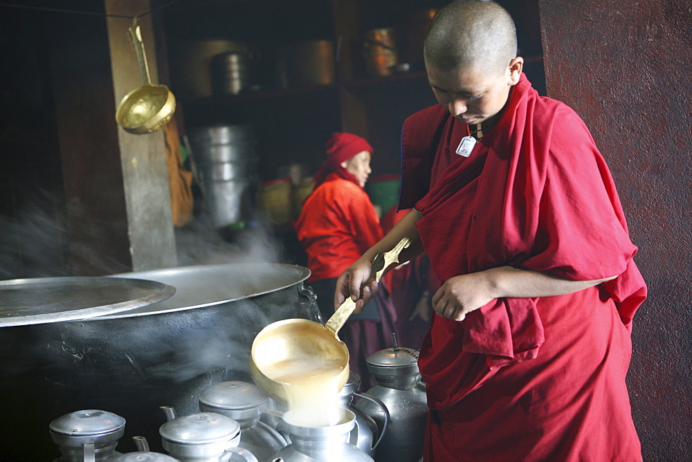 Thupten choeling nuns prepare butter-salt tea at nunnery-kitchen. solu khumbu, nepal