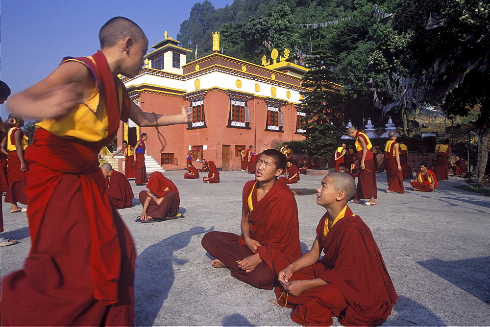At tnorbutse,monks at triten norbutse vigorously debate philosophy, melting away incorrect views like butter in. Bonpo monks debate at triten norbutse monastery. Nepal