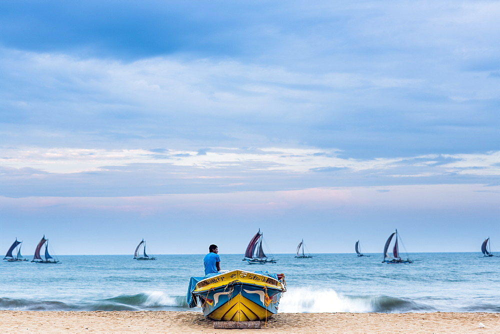 Fishing boats coming back to port, Negombo, Sri Lanka, Asia