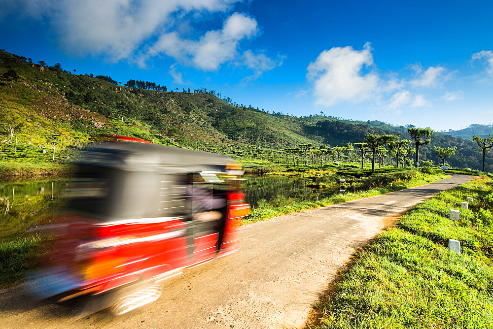 Tuk Tuk driving through a tea plantation near Haputale, Badulla District, Uva Province, Sri Lanka, Asia