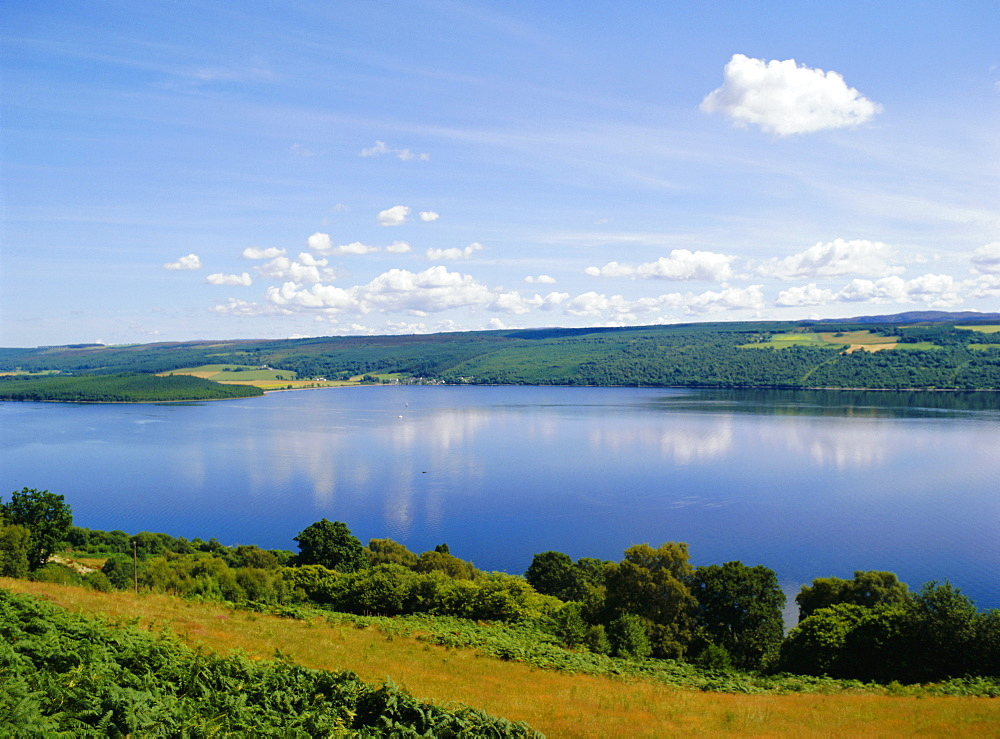 Loch Ness in summer, from Abriachan, near Inverness, Highlands Region, Scotland, UK, Europe - 120-2149