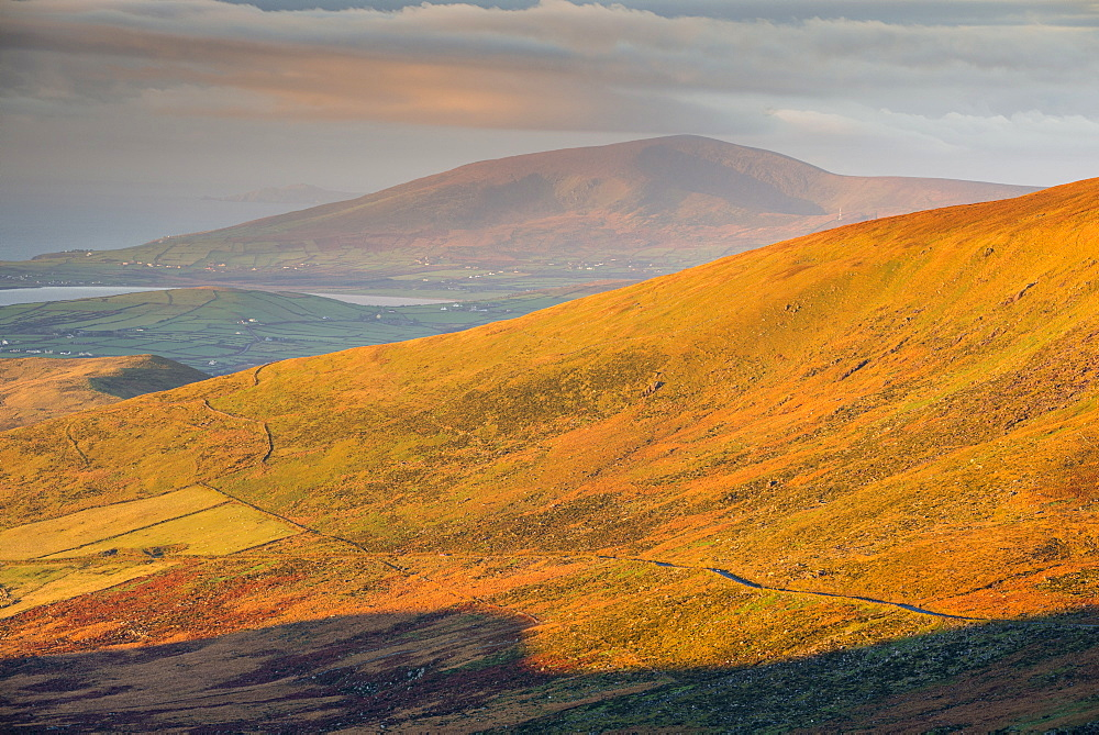 Dingle Peninsula at sunrise, County Kerry, Munster, Republic of Ireland, Europe - 1200-28