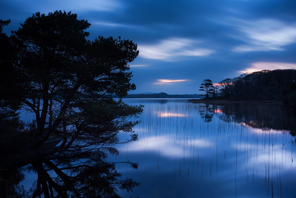 Muckross Lake at dawn, Lakes of Killarney, Killarney National Park, County Kerry, Munster, Republic of Ireland, Europe - 1200-40