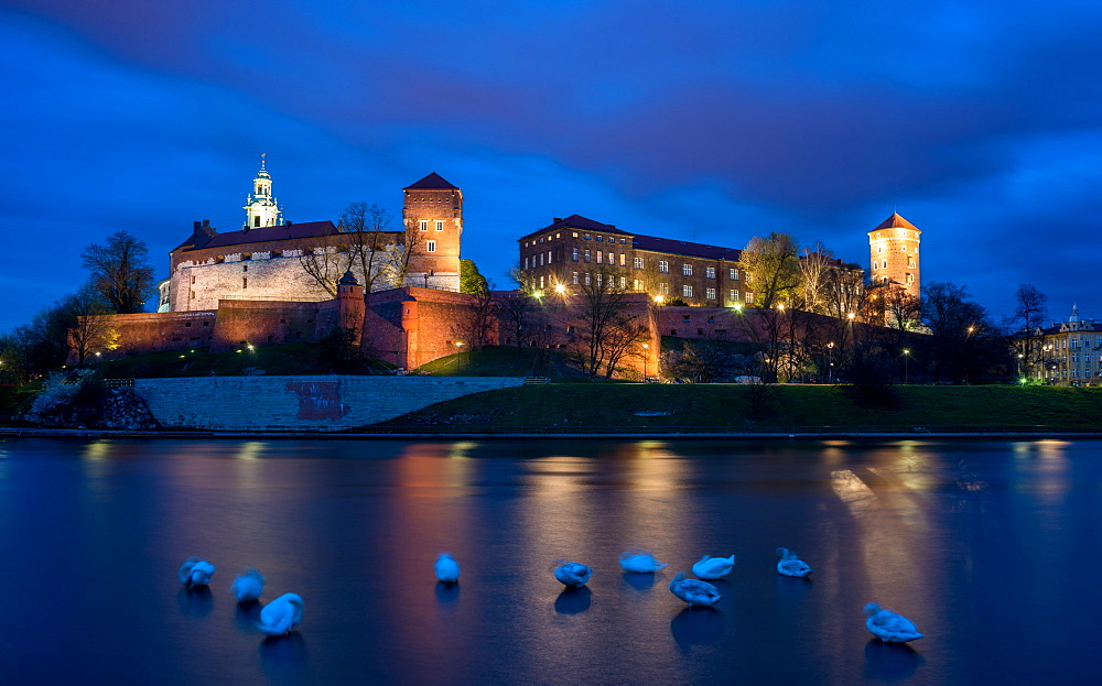 Wawel Hill Castle and Cathedral, Vistula River with swans, illuminated at night, Krakow, Poland, Europe - 1200-46