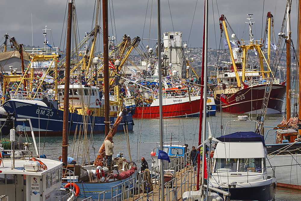 Boats tied up in the busy harbour at Brixham, Torbay, Devon, England, United Kingdom, Europe