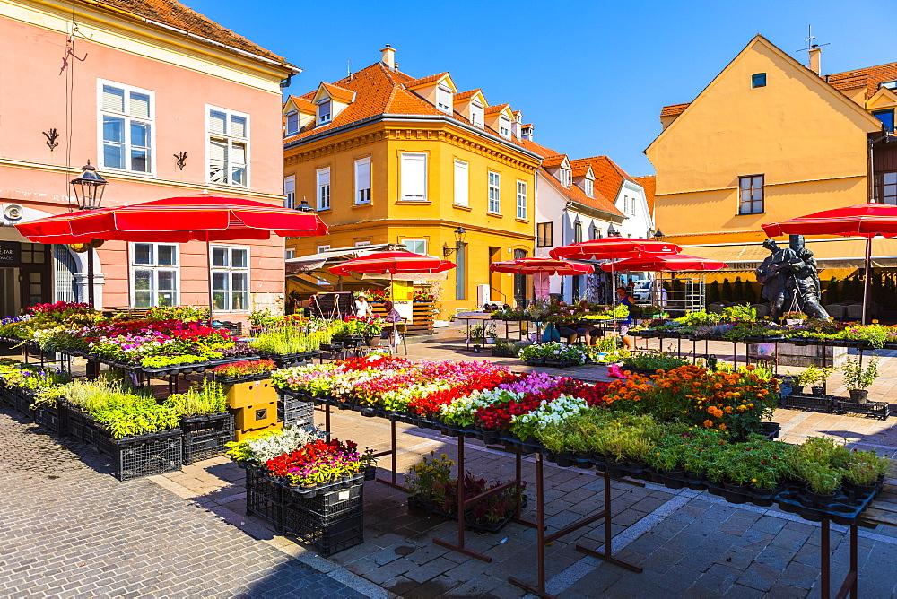 Dolac, market square, Zagreb, Croatia, Europe - 1207-302