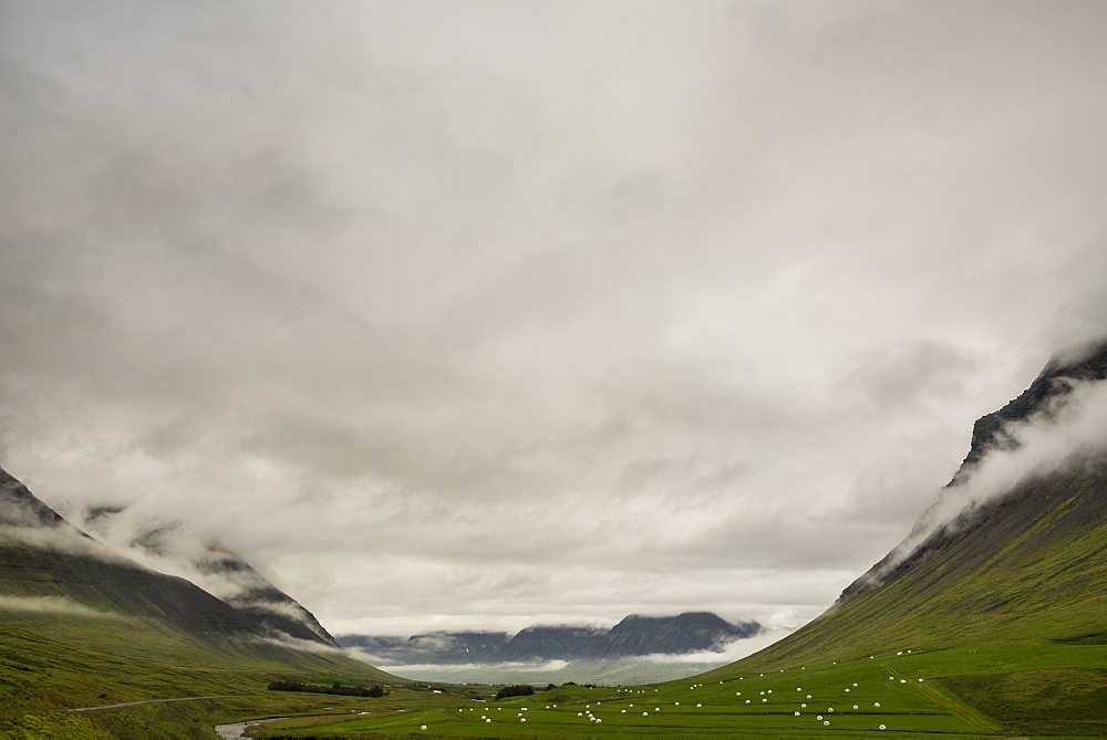 Outside Isafjordur, Westfjords, Iceland, Polar Regions