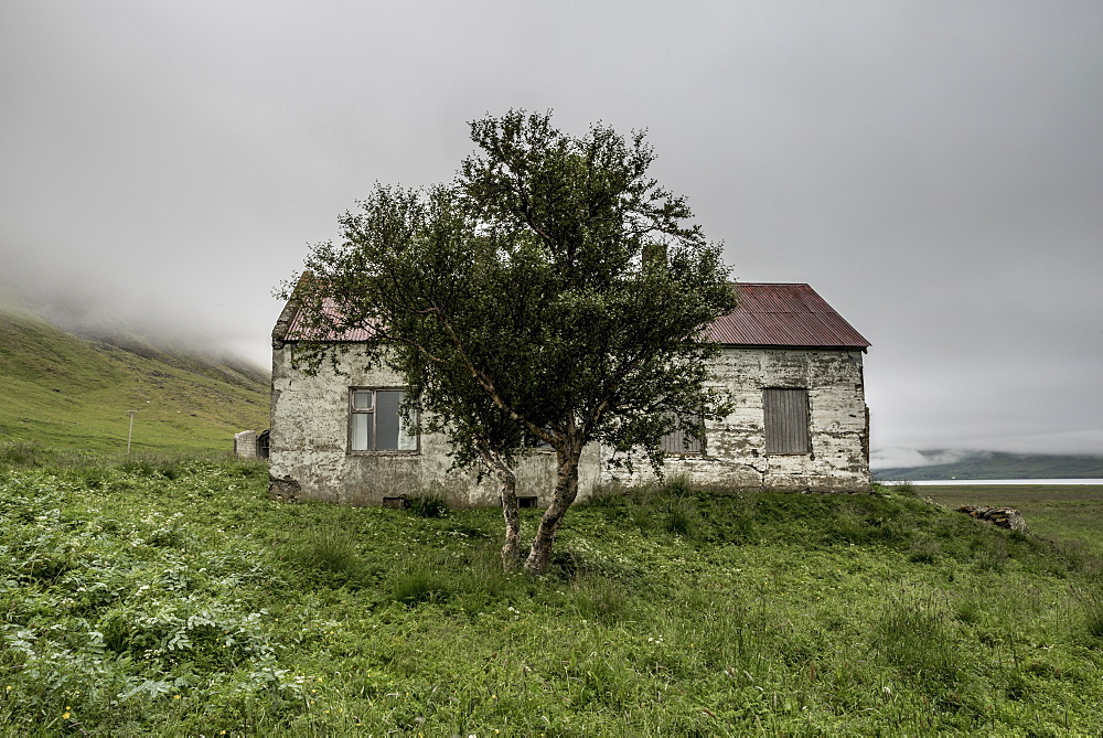 Abandoned farmhouse, Westfjords, Iceland, Polar Regions