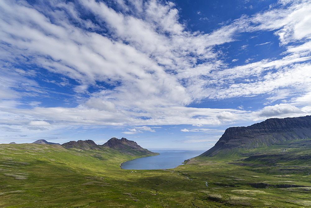 Strandir Coast, Westfjords, Iceland, Polar Regions - 1209-149