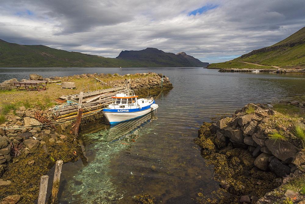 Djupavik, Strandir Coast, Westfjords, Iceland, Polar Regions - 1209-153