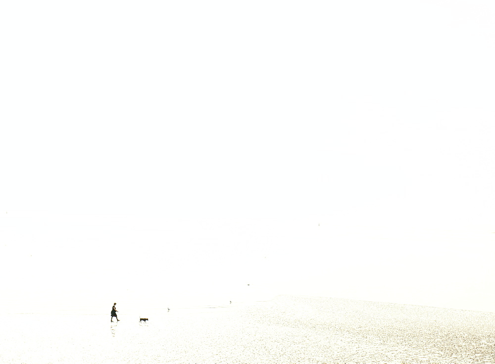 Woman walking a dog at low tide on a misty beach, United Kingdom, Europe