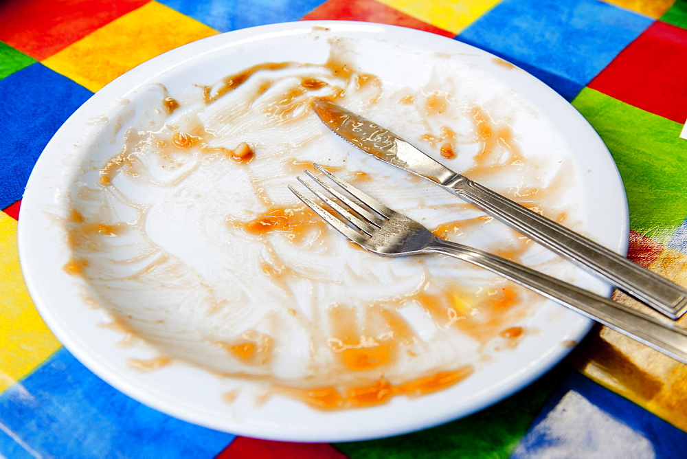 Empty plate after a Full English breakfast, United Kingdom, Europe