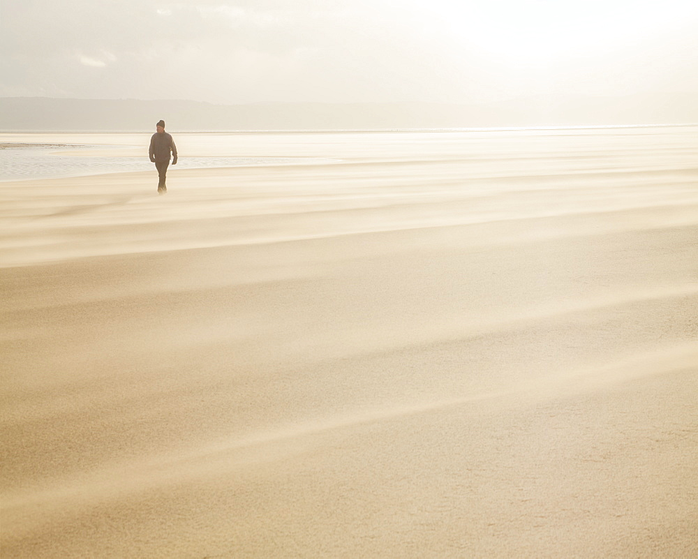 Man walking across a windy beach with dry shifting sands creating a cloud underfoot, West Kirkby, Wirral, England, United Kingdom, Europe