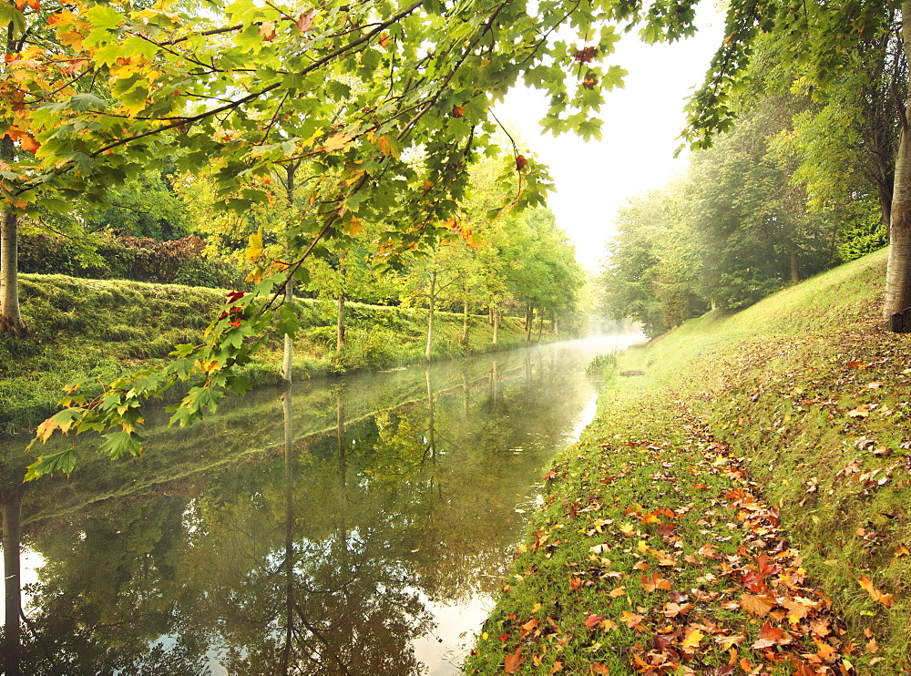 Misty morning on The Royal Canal, Republic of Ireland, Europe