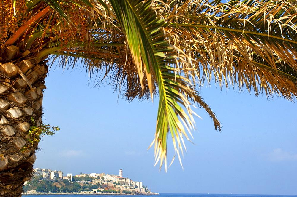 Bastia, Corsica, Europe - 1212-402