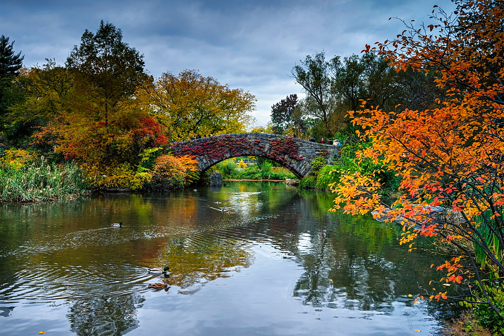 Central Park, New York City, United States of America, North America - 1215-3