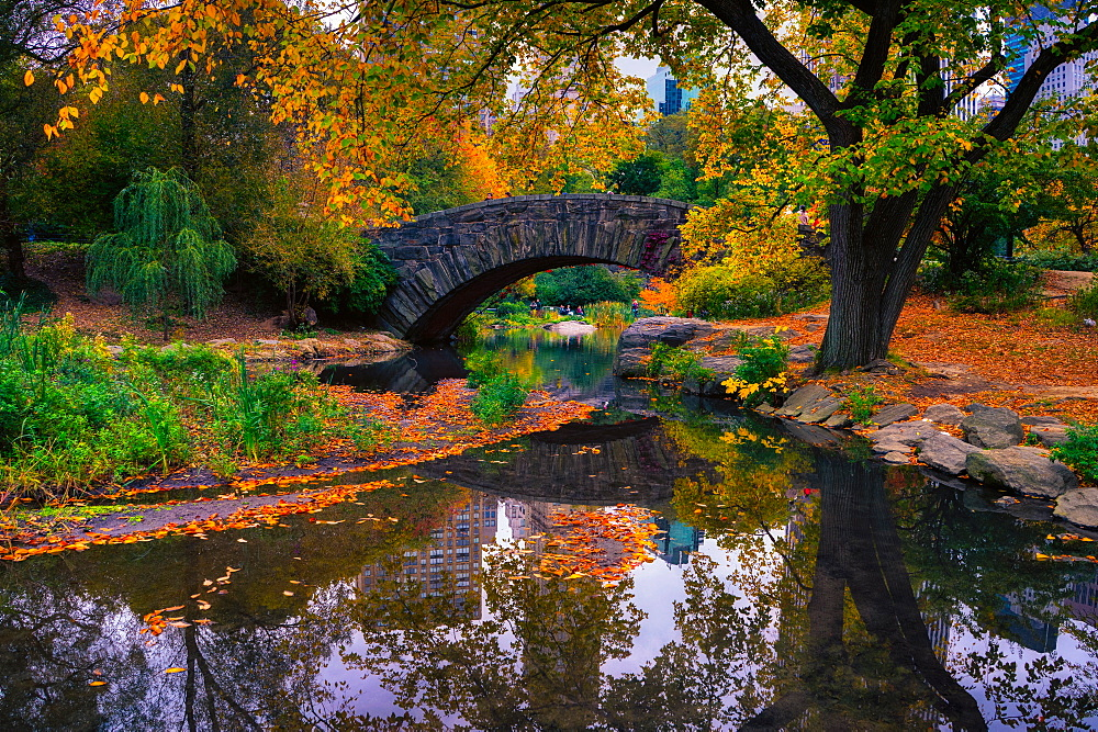 Central Park, New York City, United States of America, North America - 1215-5