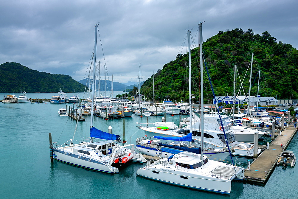 Picton Harbour, Picton, Marlborough Region, South Island, New Zealand, Pacific - 1216-304