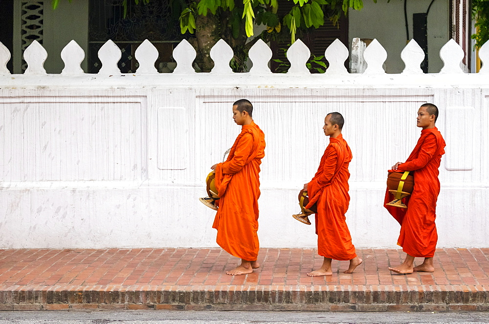 Buddhist novice monks line up to receive alms (Tak Bat) at dawn, Luang Prabang, Louangphabang Province, Laos, Indochina, Southeast Asia, Asia