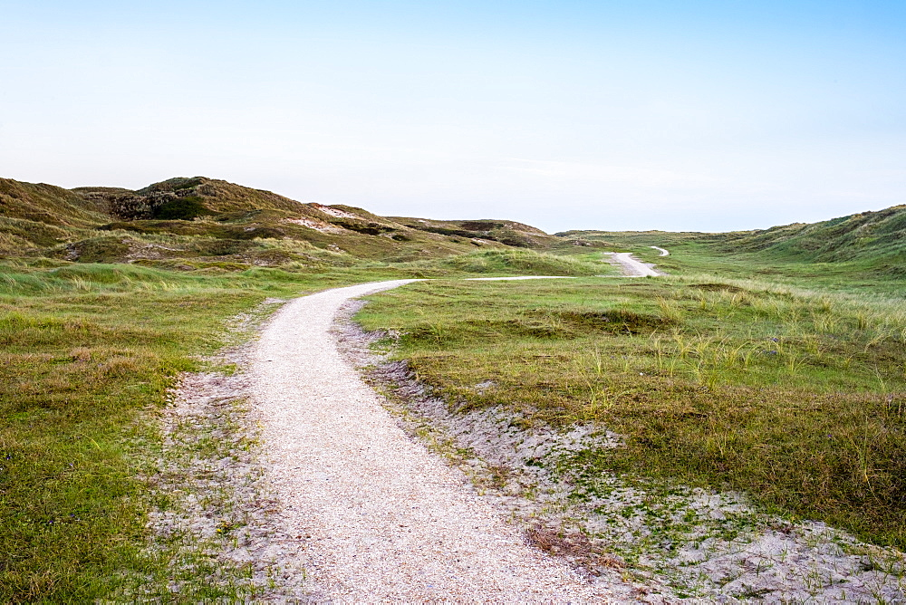 Walking path through the dunes, Julianadorp, North Holland, Netherlands, Europe - 1217-291