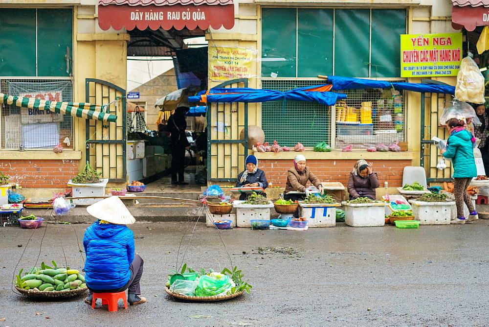 Vietnamese woman selling fruit at Dong Xuan Market, Hoan Kiem District, Old Quarter, Hanoi, Vietnam, Indochina, Southeast Asia, Asia