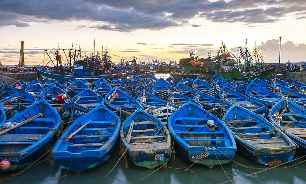 Blue boats in the old fishing port at sunset, Essaouira, Marrakesh-Safi, Morocco, North Africa, Africa