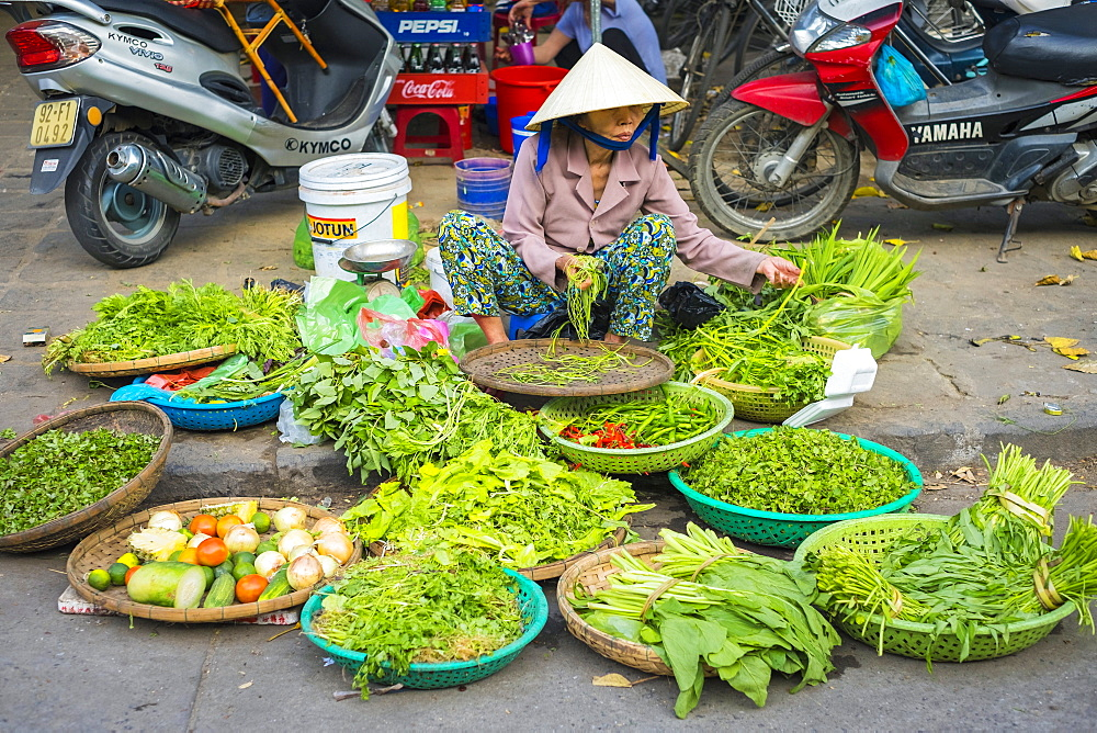 Woman selling herbs and vegetables at the central market in Hoi An, Quang Nam Province, Vietnam, Indochina, Southeast Asia, Asia
