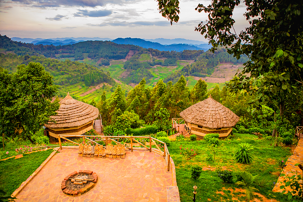 Agandi Eco Lodge (the huts), Bwindi Impenetrable Forest National Park, UNESCO World Heritage Site, Uganda, East Africa, Africa