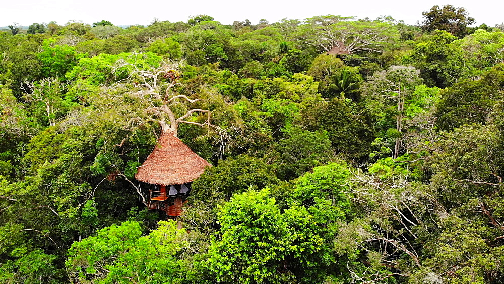Aerial drone shot of the treehouses at the Treehouse Lodge, Iquitos, Amazon, Peru, South America - 1218-1258