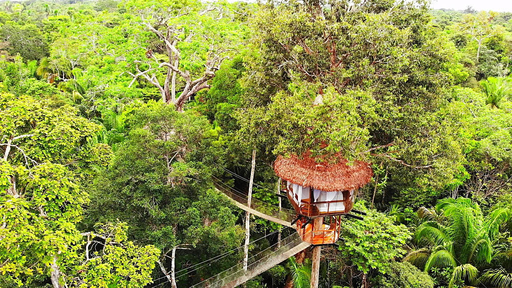 Aerial drone shot of the treehouses at the Treehouse Lodge, Iquitos, Amazon, Peru, South America - 1218-1262