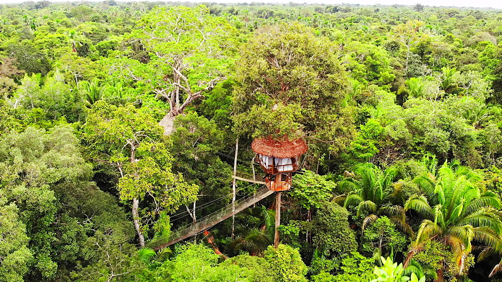Aerial drone shot of the treehouses at the Treehouse Lodge, Iquitos, Amazon, Peru, South America - 1218-1263