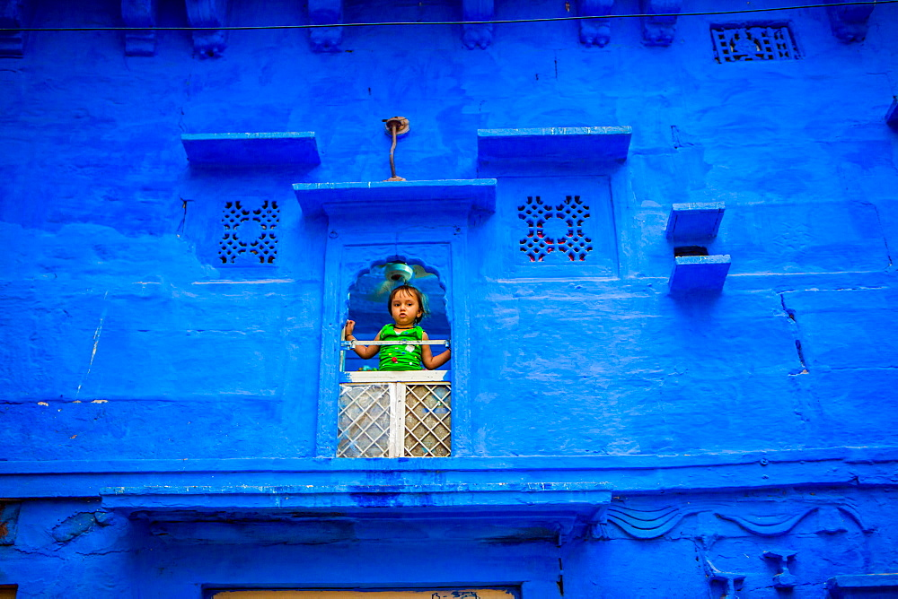 Little girl standing in her window in the blue houses of Jodhpur, the Blue City, Rajasthan, India, Asia - 1218-354
