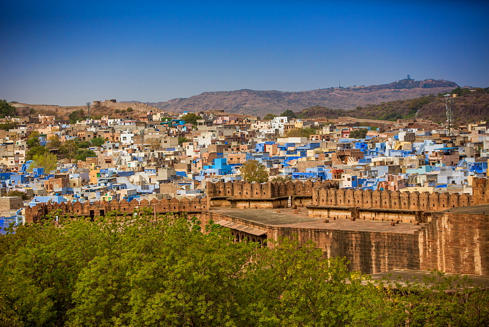 The city wall of Mehrangarh Fort towering over the blue rooftops in Jodhpur, the Blue City, Rajasthan, India, Asia