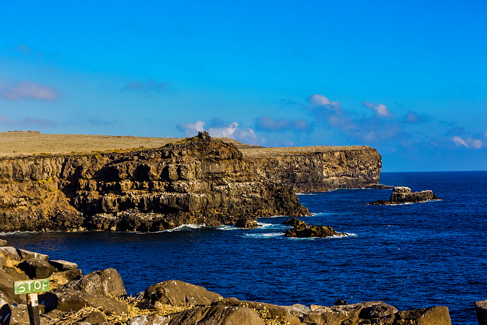 Cliffs of Espanola Island, Galapagos Islands, UNESCO World Heritage Site, Ecuador, South America - 1218-455