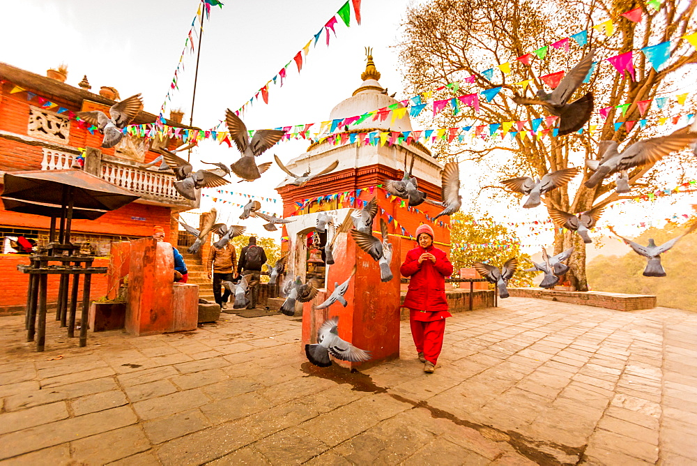 Woman walking and praying with pigeons at the hilltop temple, Bhaktapur, Kathmandu Valley, Nepal, Asia