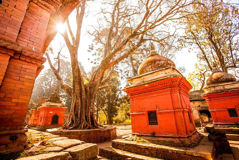 Pashupati Temple tombs, Kathmandu, Nepal, Asia - 1218-479