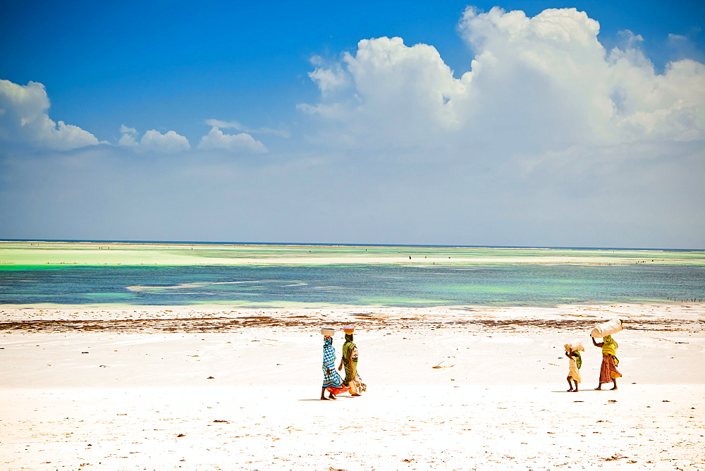 African women walking on the beach, Zanzibar Island, Tanzania, East Africa, Africa