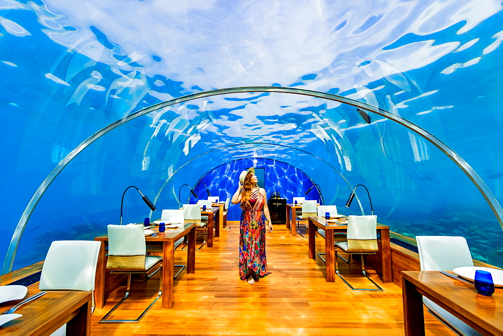 Views from Ithaa, the undersea restaurant at Conrad Maldives, Maldives, Indian Ocean, Asia - 1218-628