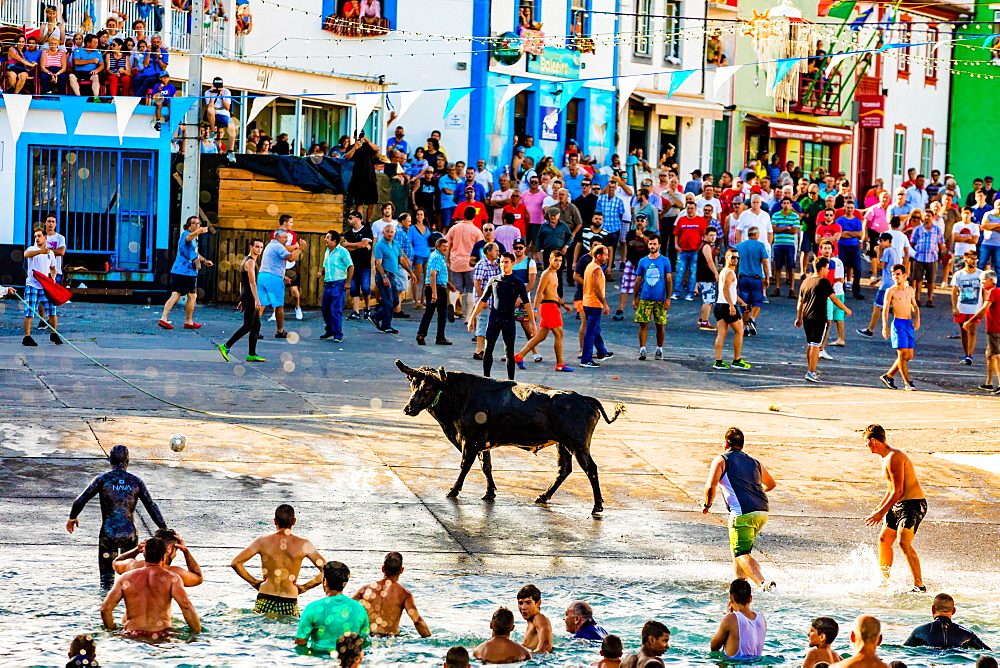 'Running of the Bulls' in Sao Mateus village on Terceira Island. - 1218-751