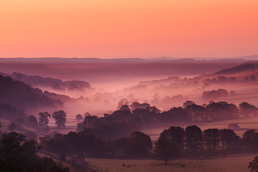 The Littondale valley in the Yorkshire Dales with mist lingering among the trees in the pre dawn light of an autumn morning, Yorkshire, England, United Kingdom, Europe