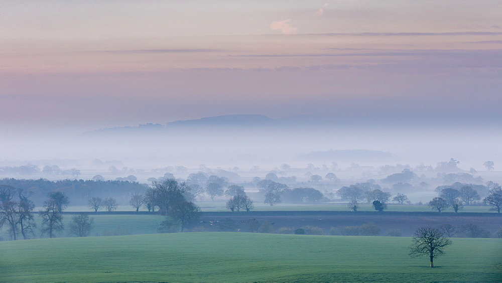 A pastel spring dawn morning with mist lying in the Cheshire plain extending to the Peckforton Hills and Beeston Castle, Cheshire, England, United Kingdom, Europe - 1219-122