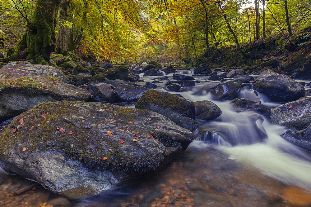 The Moness Burn flowing through the rocks within the Birks of Aberfeldy in autumn, Perthshire, Scotland, United Kingdom, Europe