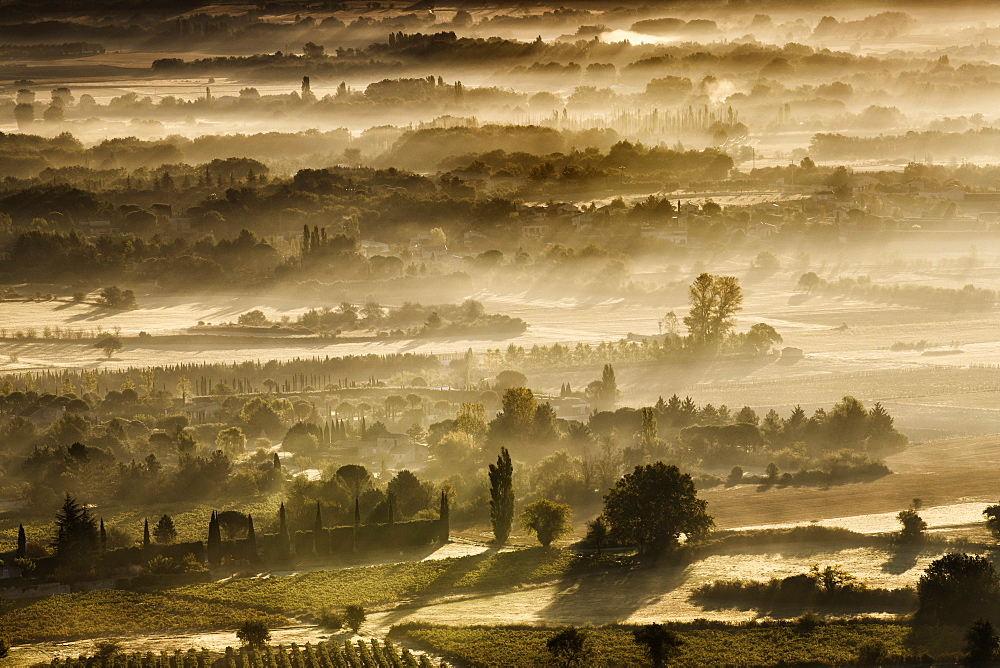 Dawn light reveals the mist lying among the fields and trees in the Luberon valley on an autumn morning, Vaucluse, Provence, France, Europe