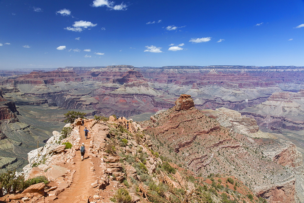Hikers descend the curving South Kaibab trail in Grand Canyon National Park, UNESCO World Heritage Site, Arizona, United States of America, North America