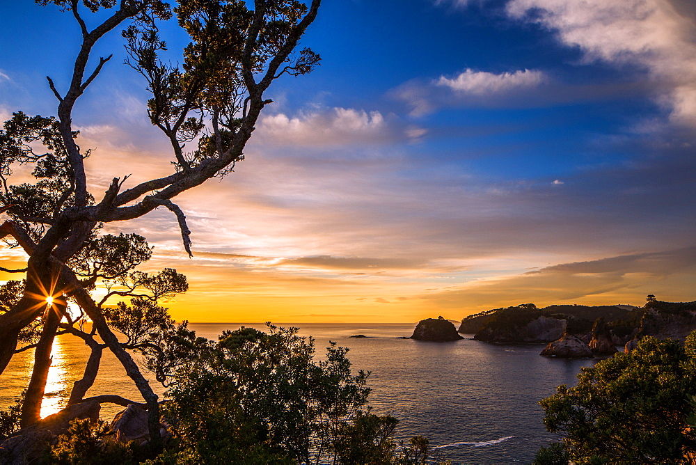 Sunrise along the rugged, lush Coromandel Peninsula on the eastern side of North Island, Waikato, New Zealand, Pacific