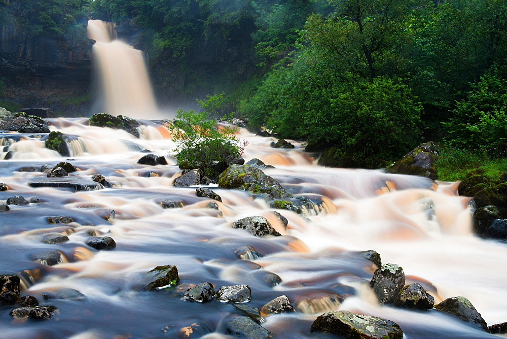 Thornton Force in full flow as the River Twiss cascades down rocks and trees, North Yorkshire, Yorkshire, England, United Kingdom, Europe