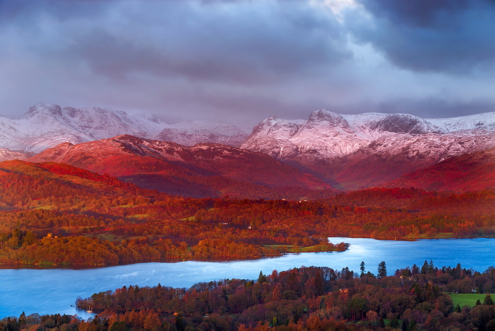 Looking across Lake Windermere to the snow capped Langdale Pikes on a winters morning in the Lake District National Park, Cumbria, England, United Kingdom, Europe
