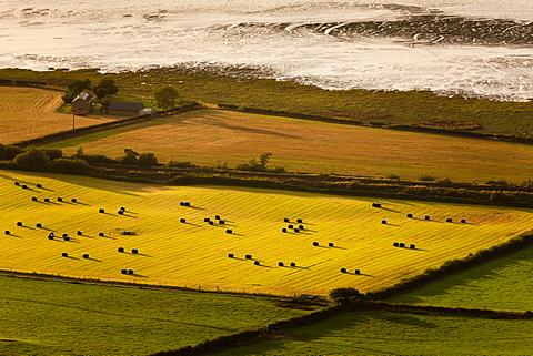 Seaside Farm, hay bales pepper lush farmland and colourful fields in evening sunlight near Aber, Snowdonia, Wales, United Kingdom, Europe
